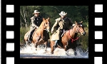 Horse Riding to Coxs River Video